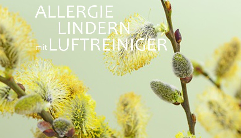 Luftreiniger Allergie